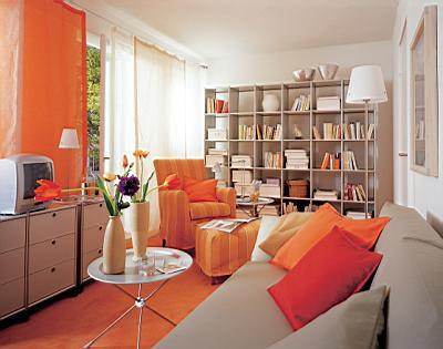 客厅 以书为墙